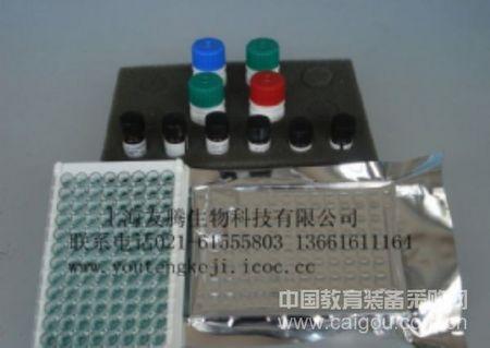 小鼠干细胞因子受体(SCFR)  Mouse SCFR ELISA kit