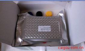 小鼠甲种胎儿球蛋白/甲胎蛋白(AFP)ELISA Kit