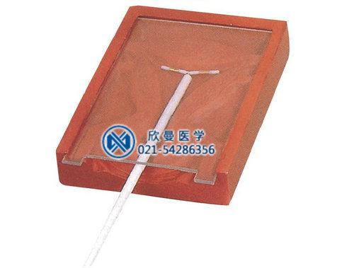 宫内避孕器训练模型I II III