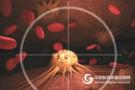 这一关键分子,有望终结癌细胞的能量来源