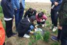 扬州大学LCproT全自动光合作用测量系统