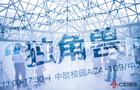 爱乐奇潘鹏凯中欧开讲:未来,中国教育如何培养学生
