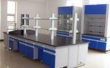 广东微生物实验室装修 净化工程 实验室家具厂家供应商