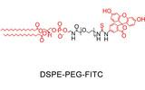 DSPE-PEG-FITC,二硬脂酰基磷脂酰乙醇胺 聚乙二醇 荧光素