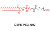 DSPE-PEG-NH2,二硬脂酰基磷脂酰乙醇胺 聚乙二醇 氨基,科研实验