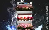 全智能空气润氧机
