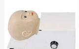旋转式婴儿 头皮静脉穿刺模型 wi114557