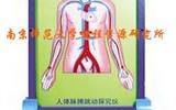 人体脉搏跳动探究仪