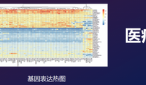 马镇筠:教育AI时代已来 中国市场潜力大