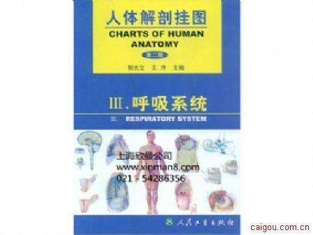 人體解剖學彩色圖譜、呼吸系統掛圖