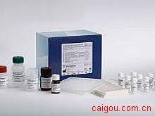 小鼠NSE,神经特异性烯醇化酶Elisa试剂盒