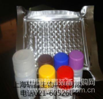 PlGF-2  ELISA试剂盒