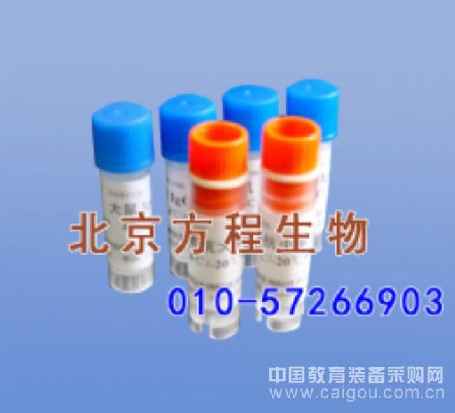 大鼠脂联素(ADP)ELISA法