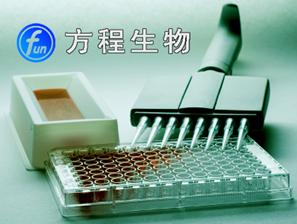 现货检测大鼠C3a进口ELISA试剂盒,大鼠补体片断3a elisa北京价格kit说明书