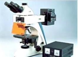 三目荧光显微镜