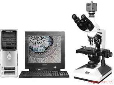 8CA-V圖像生物顯微鏡