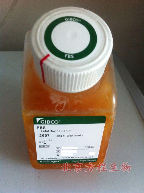 人血小板型磷酸果糖激酶(PFKP)检测/(ELISA)kit试剂盒/免费检测