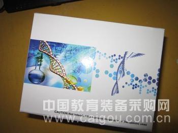 小鼠嗜环蛋白/亲环素A(CyPA)ELISA试剂盒