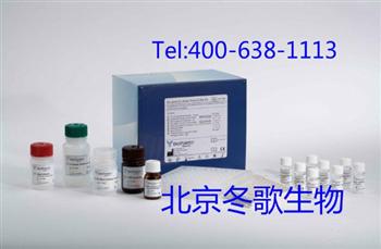 Human促胃液素受体,人(GsaR)elisa试剂盒