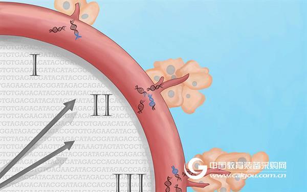 测序方法TEC SEQ让癌症血液检测又往前一步