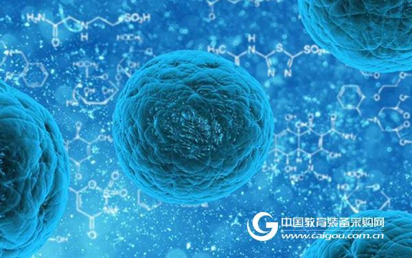 只需15分钟!新方法使造血干细胞捐赠更方便